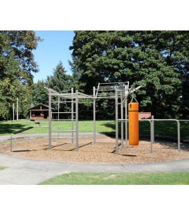 Washington Calisthenics Workout Station